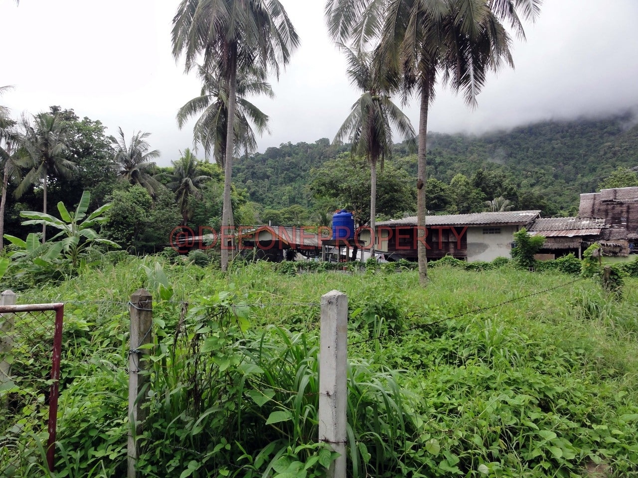 Land for rent in village center – Bailan, Koh Chang