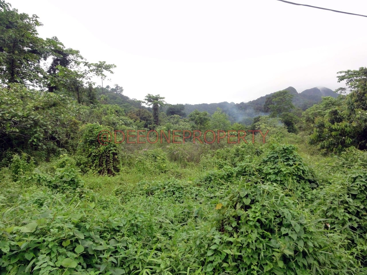 Huge Land for Sale – Klong Prao, Koh Chang