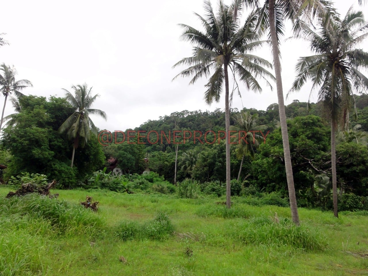 8 Rai land for Rent – North West Coast, Koh Chang