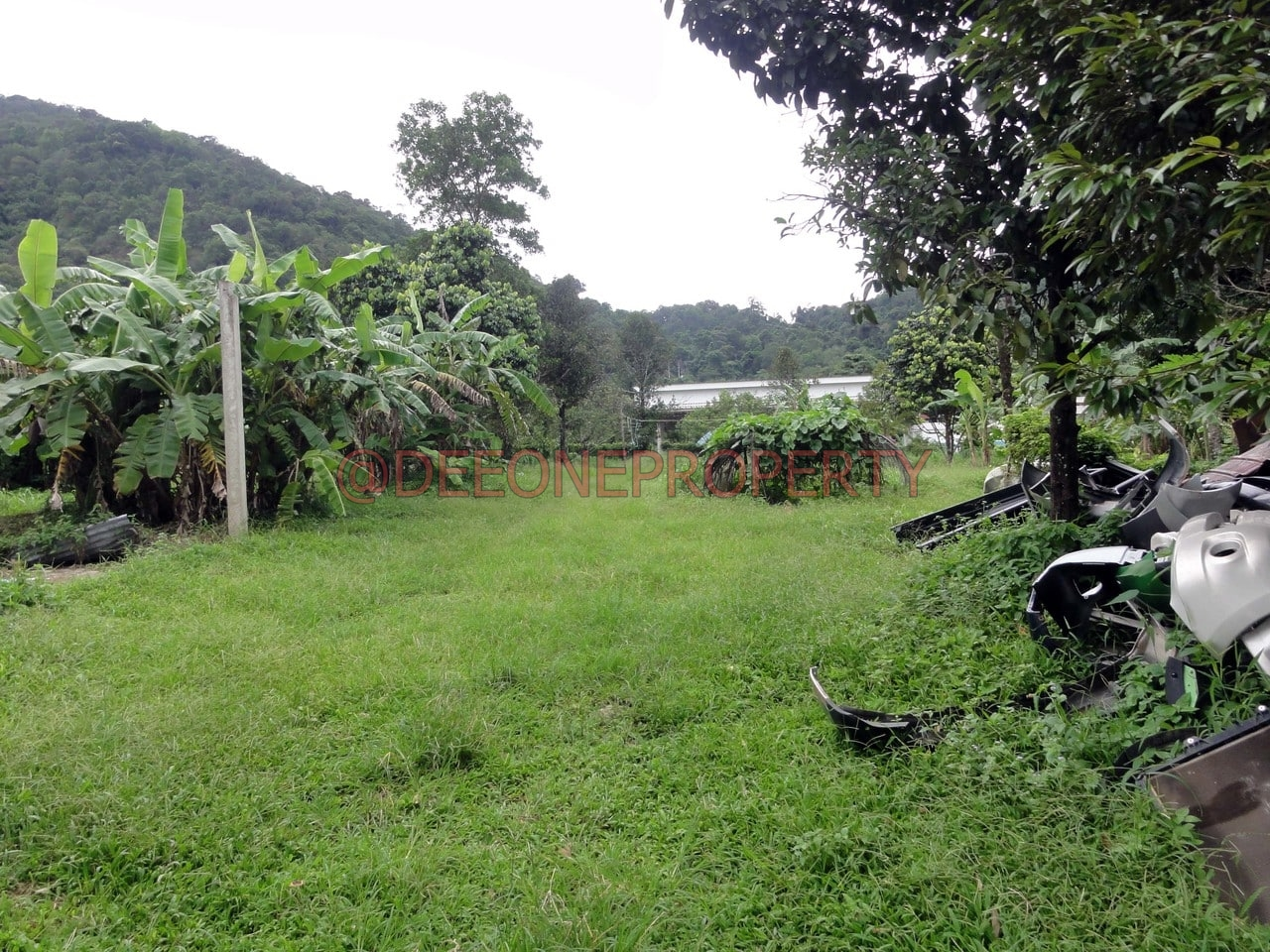 Big Land for Sale in Center Village – North East Coast, Koh Chang