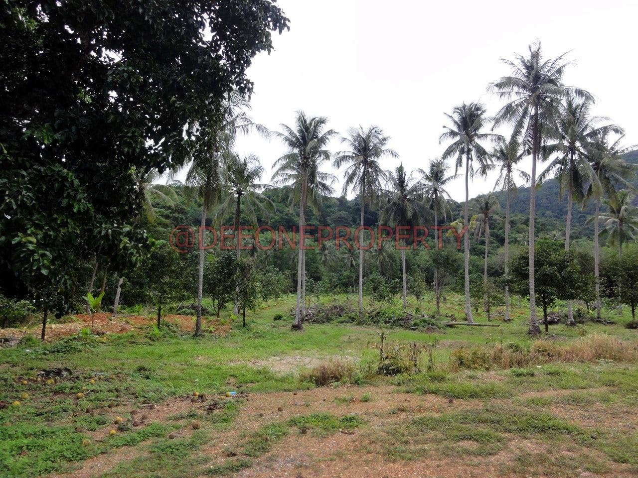 7 Rai Land for sale w/ Chanote – Klong Son, Koh Chang