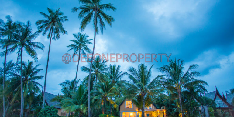 www.phusitphotography.com-58