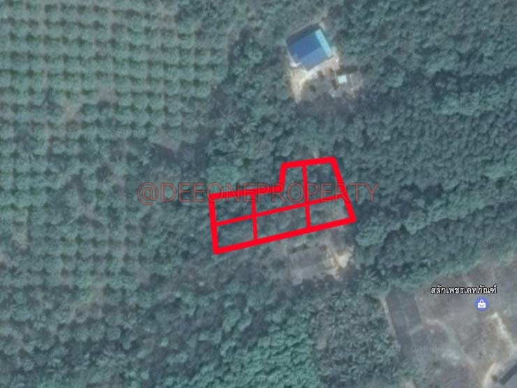 Salak Phet Land For Sale L001116