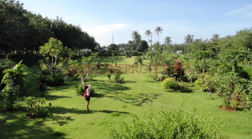 koh-mak-gardent-villa-0025-2013-06-18_09-57-20