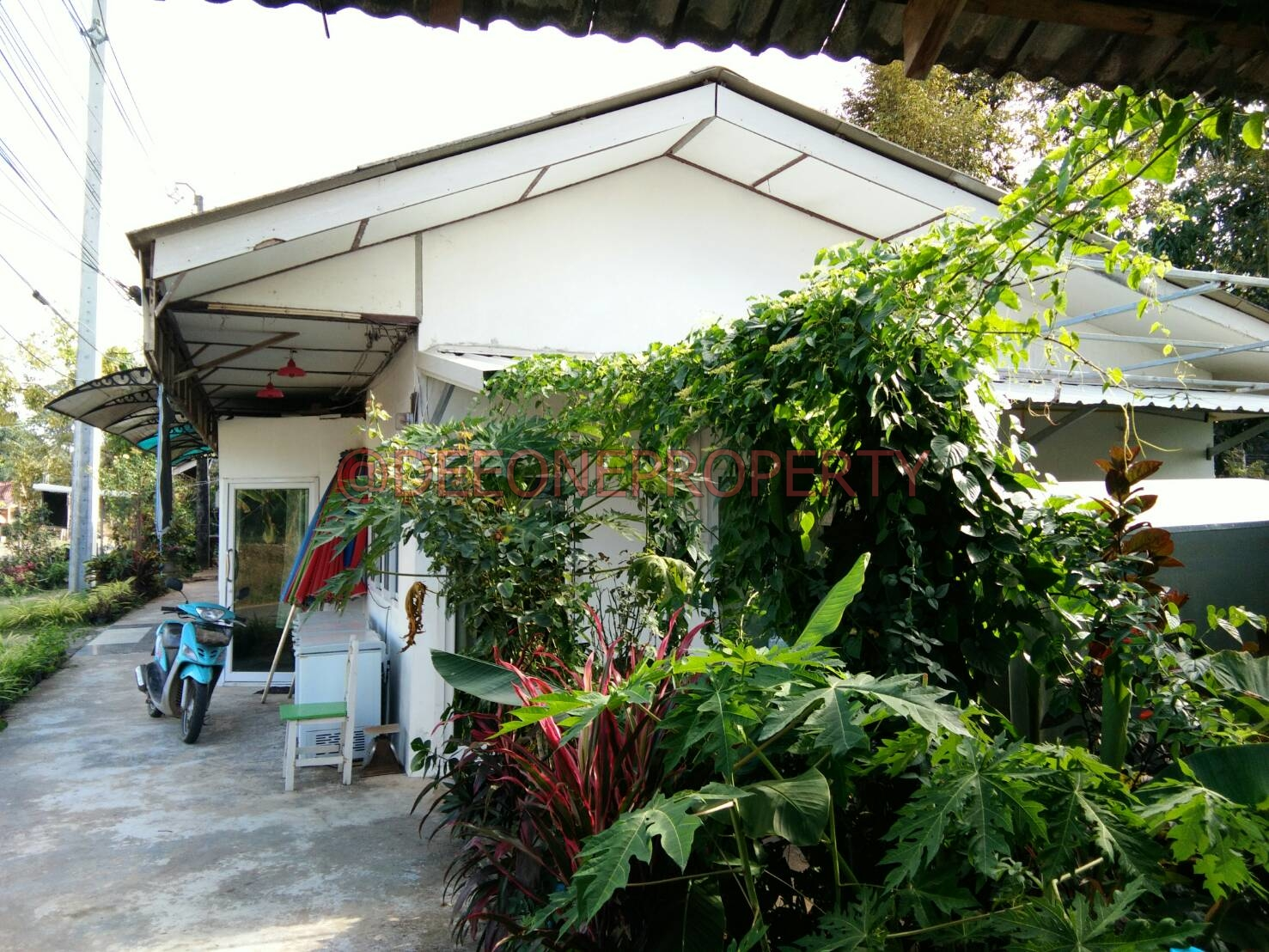 Small Guest House with Land for Sale – Dan Mai, Koh Chang