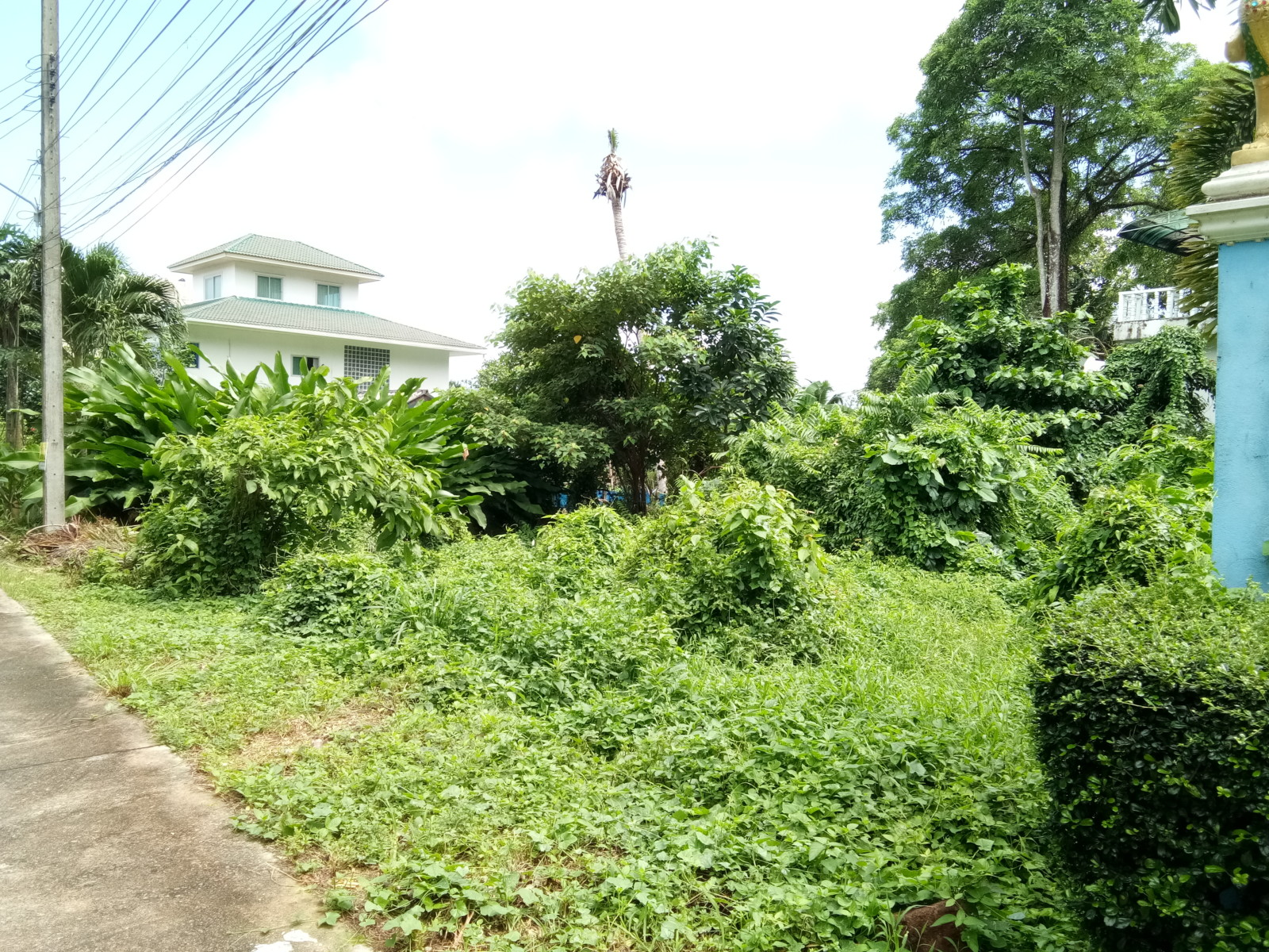 Empty House Plot in Popular Area for Sale – Chaiya Chet, Koh Chang