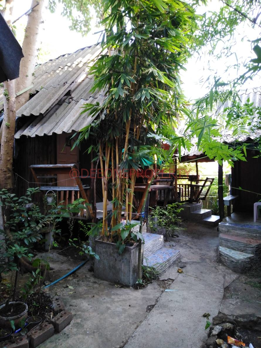 Tattoo, Massage & Guest House for Sale – Lonely Beach, Koh Chang