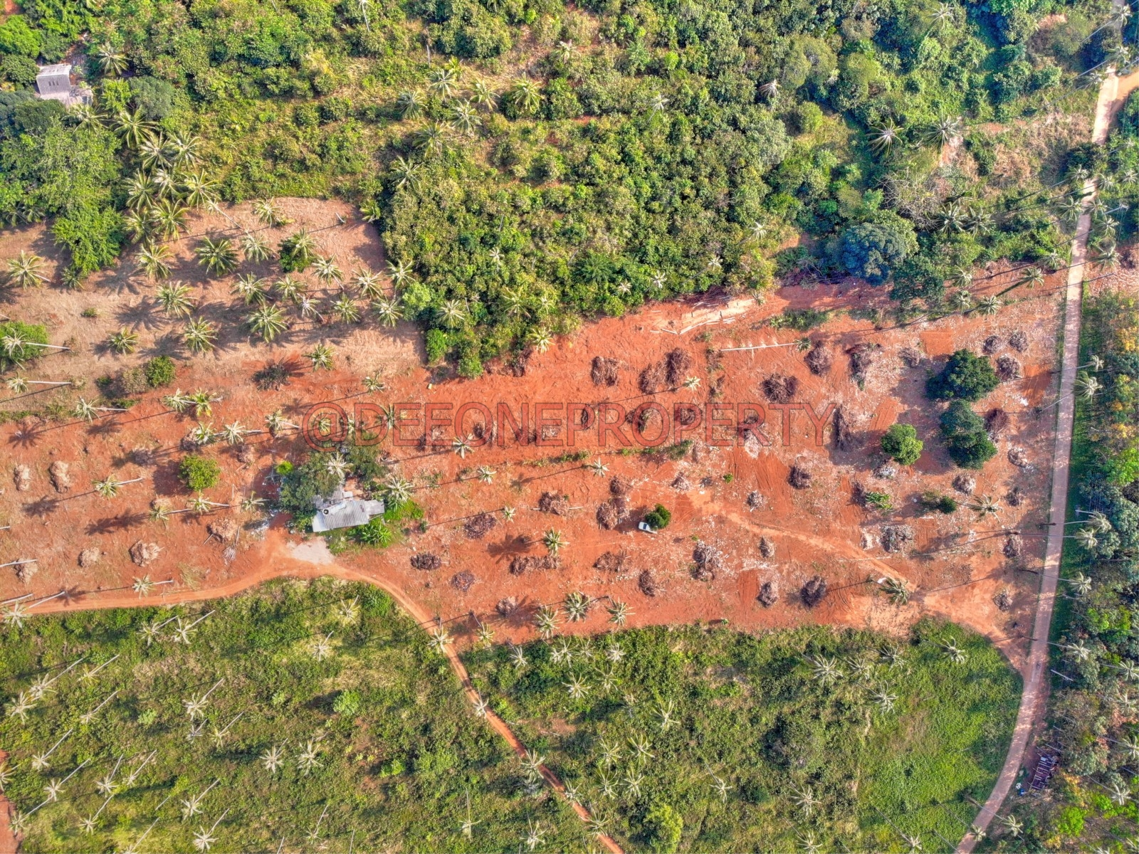 20 Rai Land to Split for Sale – Koh Mak