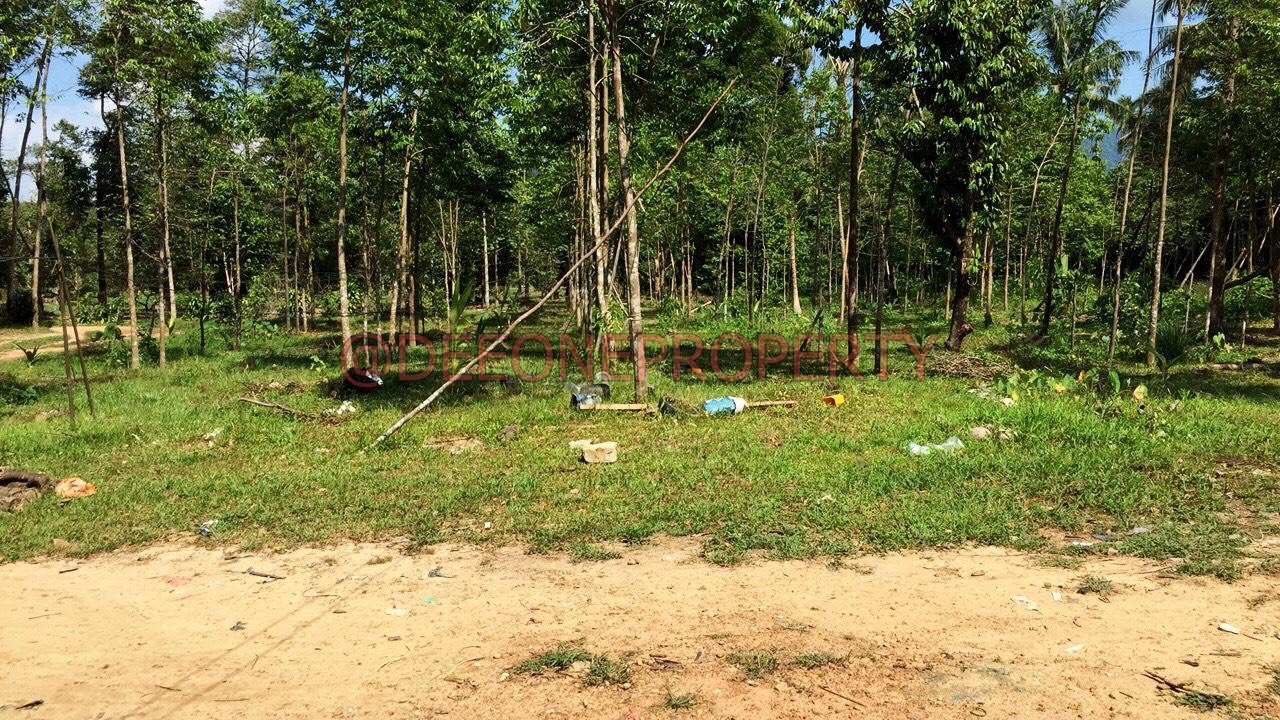 Many Pieces of Land w/ Sea View for Sale – Salak Phet, Koh Chang