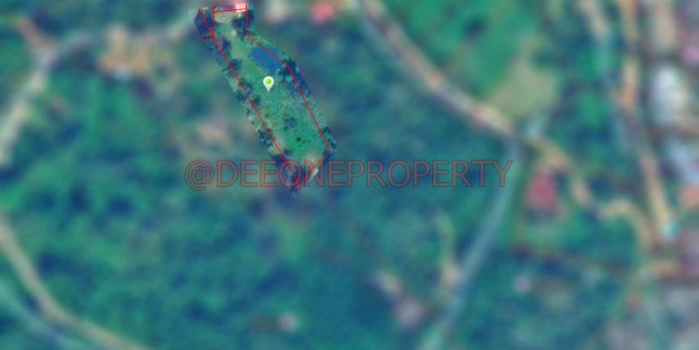 Land Border Blur