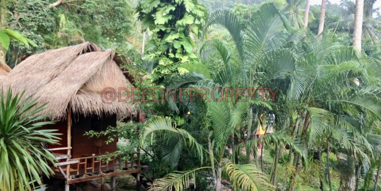 Bungalow Jungle