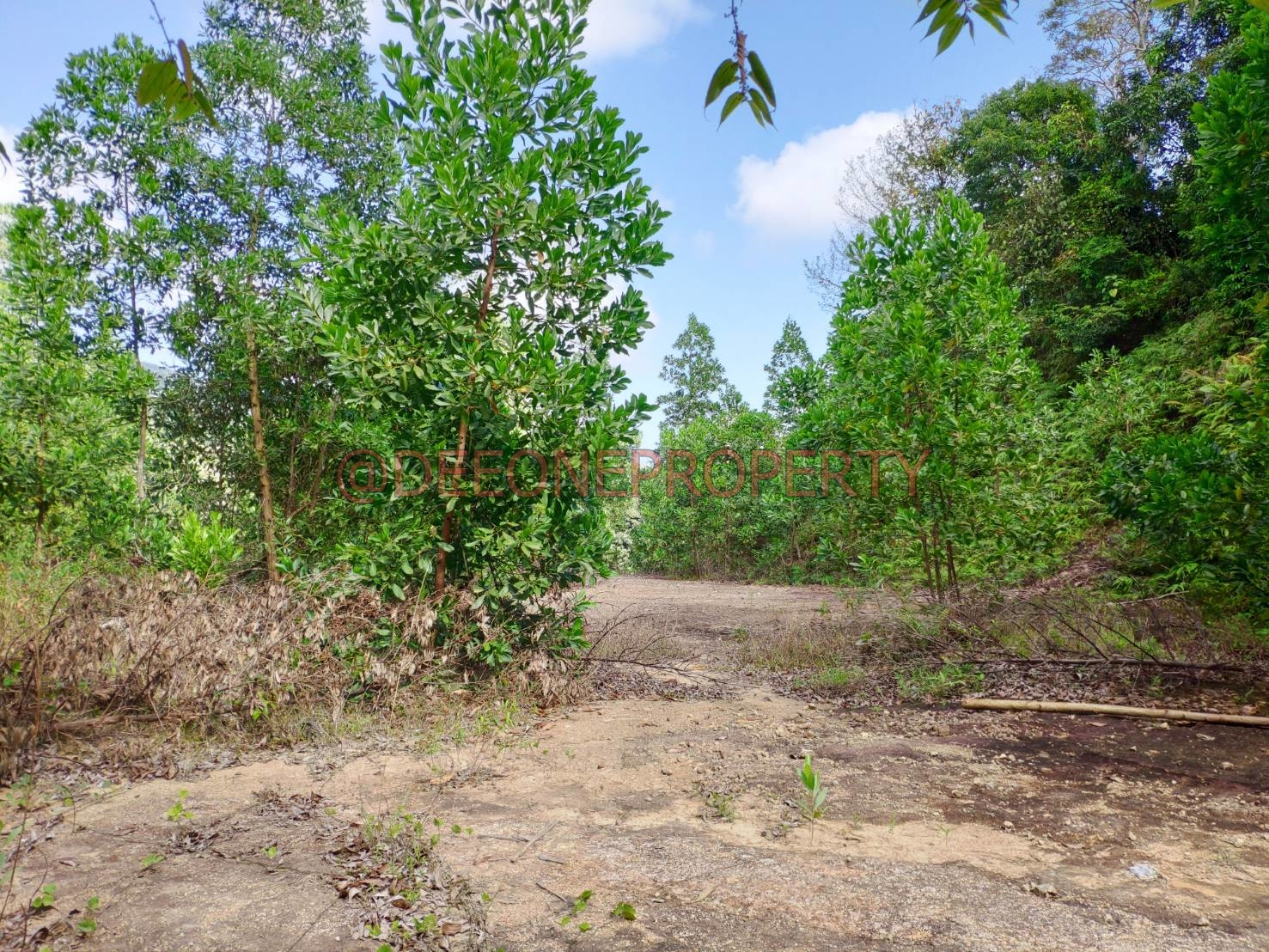 6 Rai+ Land Near Sea for Sale – Koh Chang West Coast (South)
