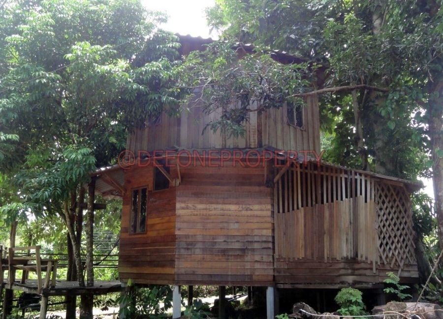 Land-Room-House-Sale-Koh-Chang (13)