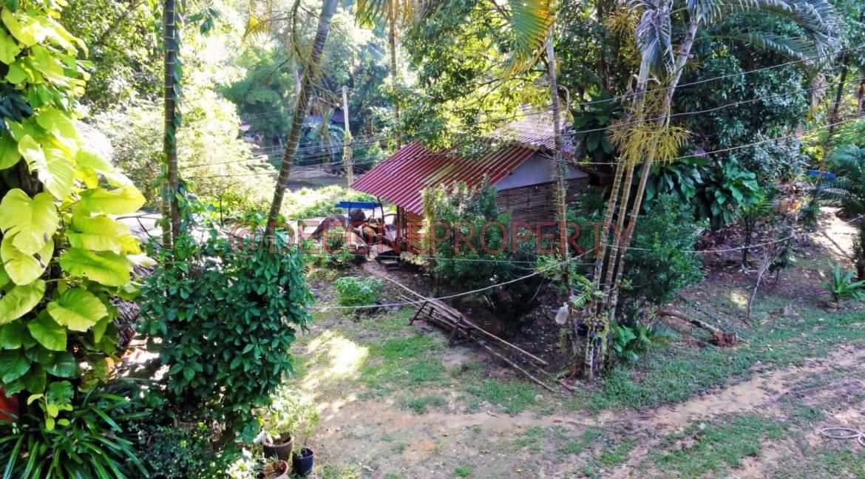 Land-Room-House-Sale-Koh-Chang (22)