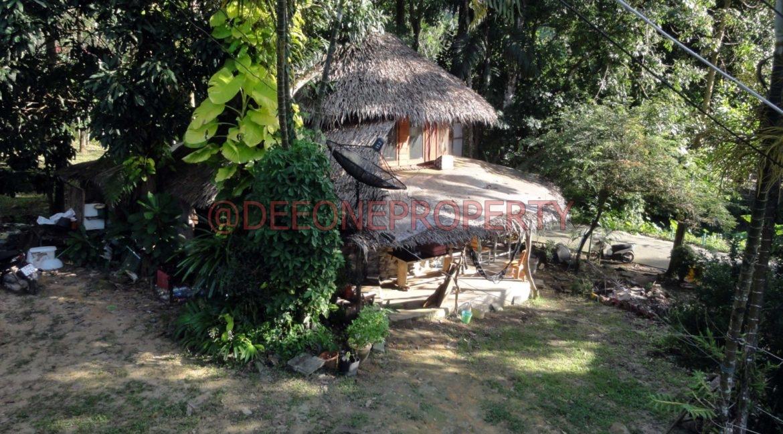 Land-Room-House-Sale-Koh-Chang (29)