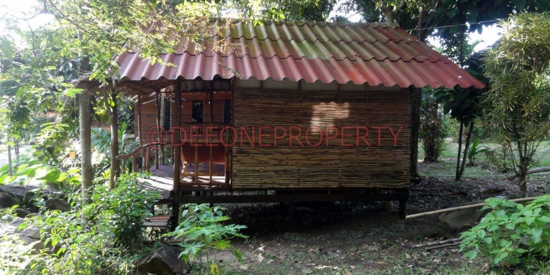 Land-Room-House-Sale-Koh-Chang (35)