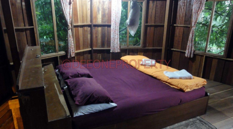 Land-Room-House-Sale-Koh-Chang (9)