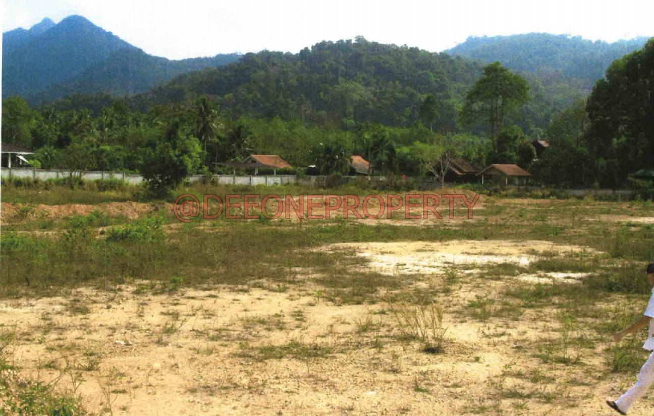 Terrain de 2 Rai à Vendre – Nord Est, Koh Chang